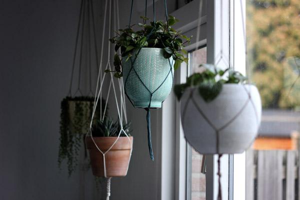植物の形状に合わせて飾る